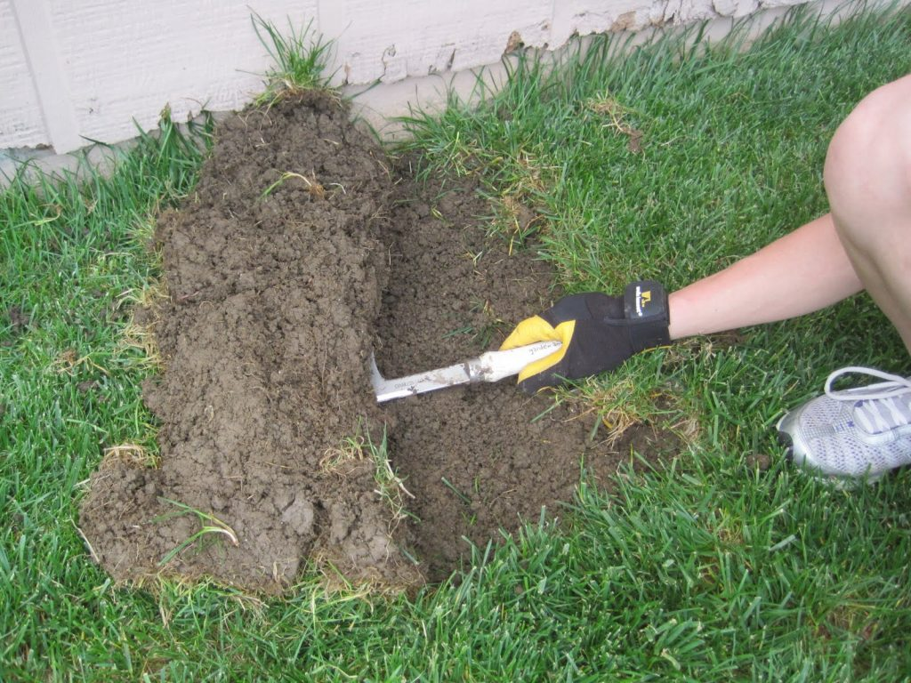 sure, peel back the sod with a knife  for the curb