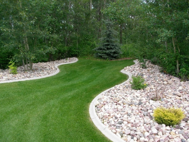 Transition buffer zone lawn to bush